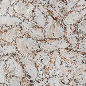 Petrified Wood White Leather Finish